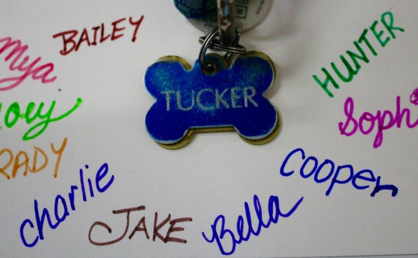 POPULAR Pup Names in SACKVEGAS